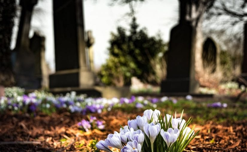 In the News: Cemeteries are Closed for Business, Now What?