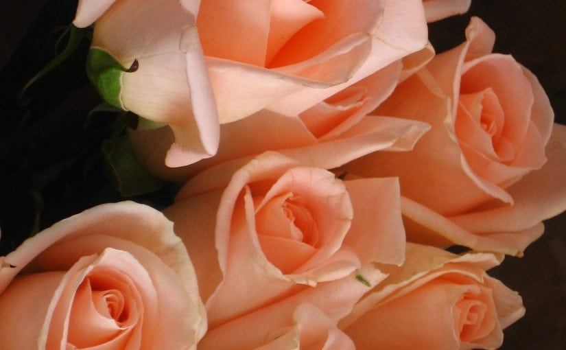In Lieu of Flowers: Five Alternative Expressions of Sympathy